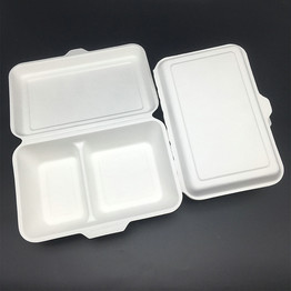 1000ml 2 compartment bagasse disposable packaging food box