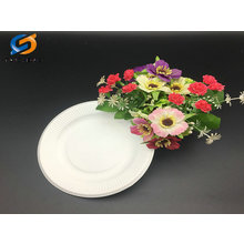 5 inch biodegradable bagasse paper pulp plate