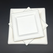High Quality bagasse Biodegradable Party Plate Cake Dishes