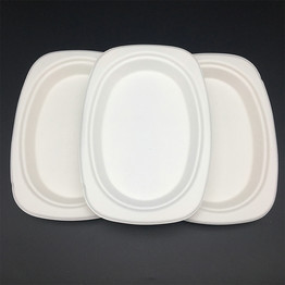 bagasse tableware biodegradable small oval plate