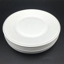 biodegradable compostable Disposable Wedding Party Plate