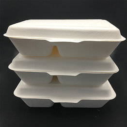 biodegradable disposable waterproof hinged lunch box