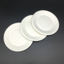 Dishes and Plates Dinnerware Type Eco-Friendly Feature biodegradable plates