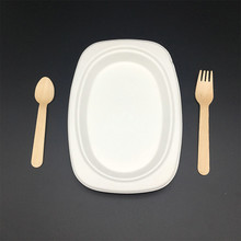 Eco-Friendly compostable biodegradable food oval plate and dishes
