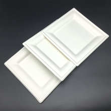 sugarcane bagasse Eco-Friendly biodegradable to-go cake trays