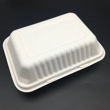 9 x6 inches compostable biodegradable sugarcane bagasse food box