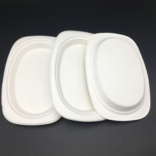 sugarcane biodegradable Eco-Friendly oval shape to-go cake trays