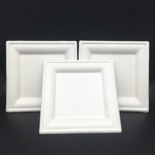 Molded Fiber Compostable Biodegradable Square plates