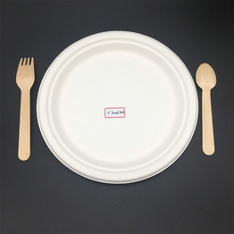 9 inches no division Eco-Friendly Disposable biodegradable paper plates