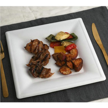 Natural fiber Sugarcane Biodegradable Square Catering Plates with BPI Certified