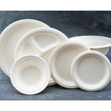 6inch 7inch 8inch sugarcane Bagasse biodegradable Round paper trays made from plant