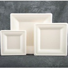 6inch Natural Bagasse Biodegradable Square Plates with FDA Certified
