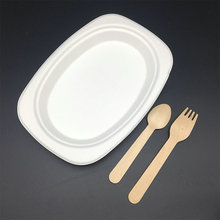 compostable sugarcane bagasse pulp biodegradable small oval plate with FDA certified