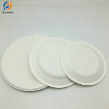 6-10 inch biodegradable sugarcane bagasse plate manufacture