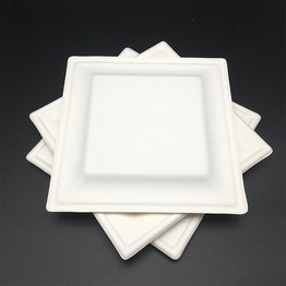 natural eco-friendly dinnerware sugarcane pulp square tray cake plate