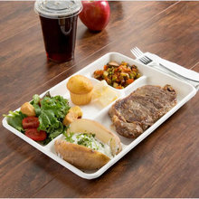 eco-friendly sugarcane pulp 5 compartment catering trays with BPI certified
