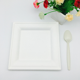 compostable sugarcane fiber bagasse picnic plate square shape with cornstarch cutlery