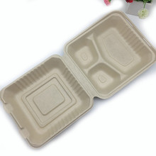 8 inch 3 compartment biodegradable brown color takeout hinged box