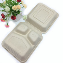 8 inch biodegradable brown color sugarcane pulp water proof takeout hinged clamshell