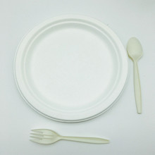 Biodegradable tableware disposable sugarcane oil proof round plate