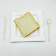 White compostable sugarcane fiber picnic plate square cake tray