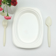 eco-friendly Heavy Duty Natural Sugarcane Compostable Bagasse Oval Tray with cutlery
