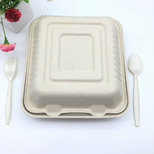 8 inch compostable sugarcane pulp dinnerware takeout hinged clamshell food box