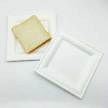 10-Inch Compostable Square Plates Sugarcane Fiber Tree-Free Heavy Duty Disposable Biodegradable Plate for Dinner
