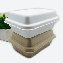 rectangle biodegradable sugarcane pulp 1000ml food box with lid