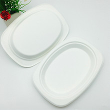 eco-friendly food grade biodegradable bagasse elipse food oval plate
