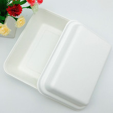 natural bagasse pulp 1000ml takeaway food packaging potato box with lid