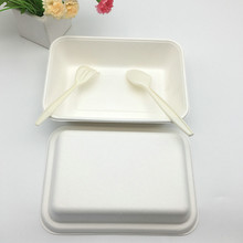 1000ml compostable biodegradable rectangle potato take out to go food box with lid