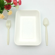 natural plant fiber foodware biodegradable takeout to go food try with cornstarch cutlery