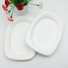 renewable molded fiber bagasse pulp oval lunch trays with BPI certification