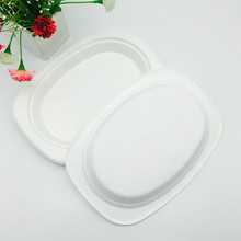 compostable Natural tree free plant fiber sugarcane bagasse oval plate