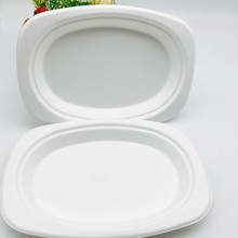 biodegradable plant fiber sugarcane bagasse small oval tray without leaking