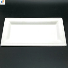 Eco-Friendly Disposable Sugarcane Bagasse Rectangle Plate