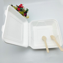 9 inch compostable sugarcane pulp takeaway food container with hinged lid