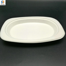 Ecofriendly bological paper pulp sugarcane bagasse oval plates biodegradable
