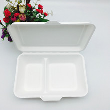 biodegradable 1000ml 2 divisions bagasse takeaway food container with hinged lid