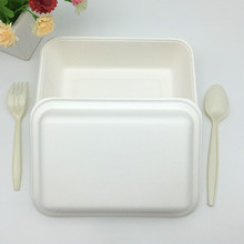 natural bagasse 1000ml Takeout Food Potato Boxes with separate lid