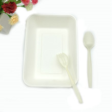 biodegradable natural bagasse 1000ml Potato tray with separate lid rectangle shape