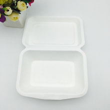 eco-friendly degradable 600ml togo food container made from sugarcane molded pulp