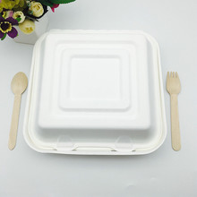 100% Biodegradable Disposable Bagasse Food Box Clamshell