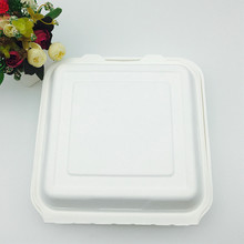 eco-friendly compostable 9inch disposable take away food container with BPI certified