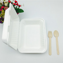 Compostable 9inch Takeout Food packaging Chamshell made from sugar cane