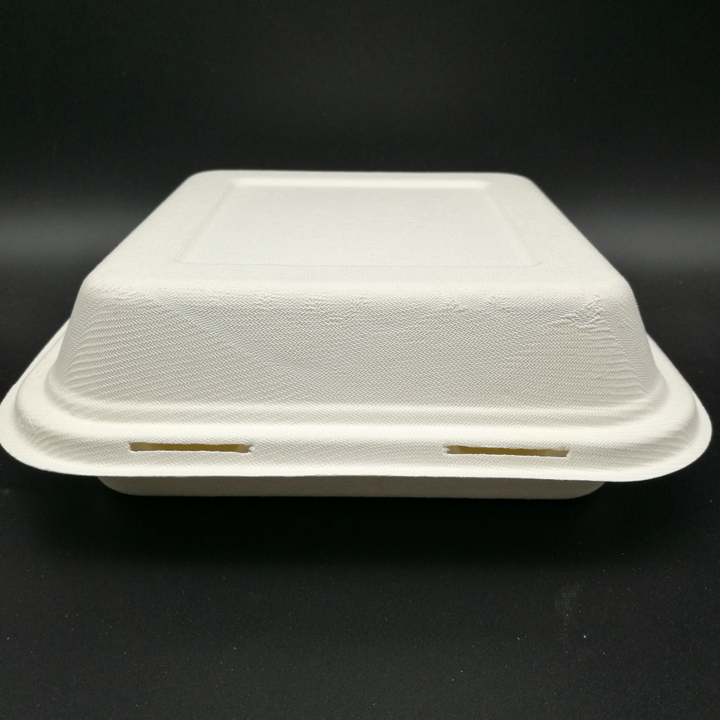 Take Out Boxes Clamshell Hinged Biodegradable To Go Food