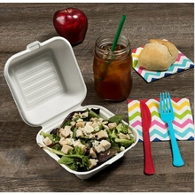 Go-Green Eco-Friendly 100% compostable, Sugarcane Fiber, 6-Inch Hinged Clamshell, Hamburger box