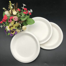 Eco Friendly Recycled 10Inches Round  Plate Disposable Sugarcane Bagasse Fast Food Tray