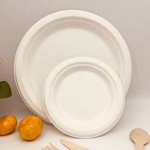 Disposable biodegradable sugarcane plate with striped